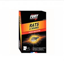 Fury rats et souris
